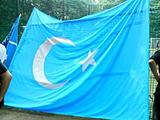 7.12東トルキスタンの国旗.jpg