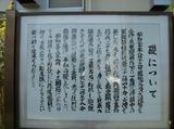 isizue02.jpg